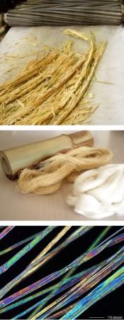 Fibras de bambú (imagen de www.didymos.de)