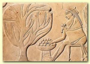 Relieve porteo en Egipto